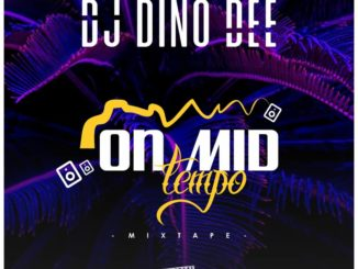 Dj Dino Dee - On Mid Tempo mixtape